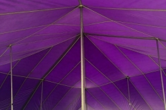 Purple big top hire